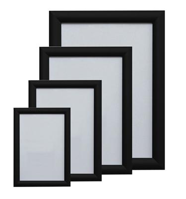 a1-snap-frames